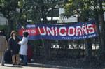 Unicorns0015